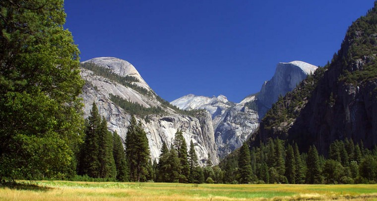 yosemite-meadows